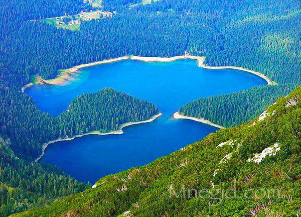 Экскурсия Каньоны в Черногории 66 (2)