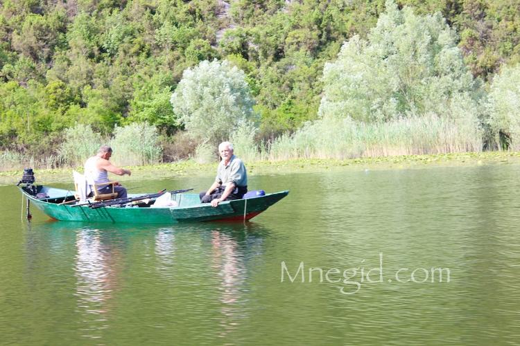 Рыбалка на Скадарском Озере (2)
