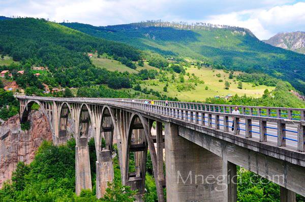 Экскурсия Каньоны в Черногории 55